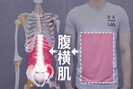 如何瘦腰和肚子?学习这个方法,让你站着躺着都能瘦