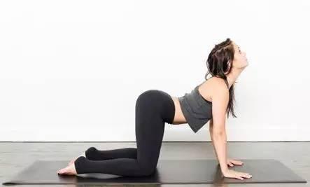 孕晚期有助于分娩的瑜伽 猫式瑜伽