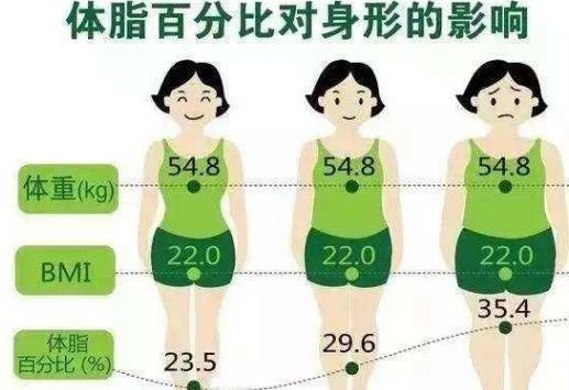 平板支撑正确姿势你会吗?女生锻炼平板支撑快速瘦肚子效果怎样