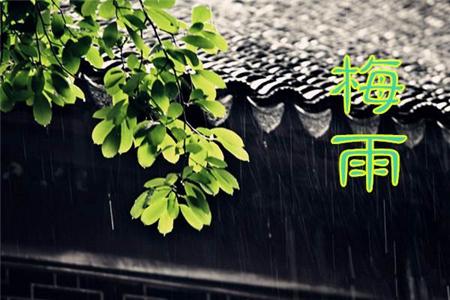 姑娘,梅雨时节最主要还是祛湿