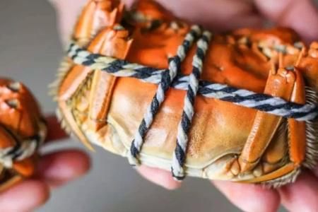 孕妇能吃螃蟹吗?孕妇吃螃蟹需要注意的事项