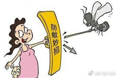 夏季驱蚊小技巧,杜绝蚊子吵闹