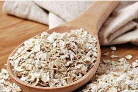 蛋白质含量高食物