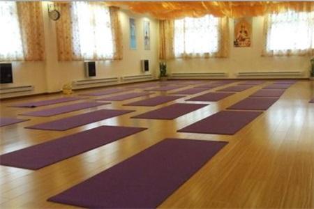 瑜伽初入门教学视频
