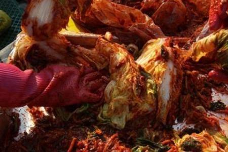 韩国泡菜文化 为什么韩国人经常吃泡菜不会腻不怕致癌