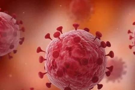 新冠状病毒突变是什么意思 病毒变异后果会怎么样