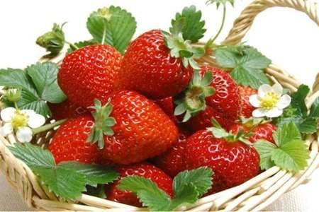 维生素c的水果排行榜,抗老第一名原来不是酸枣