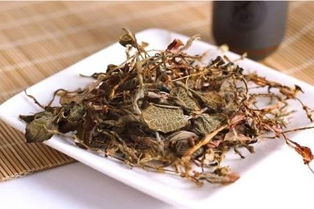 金线莲的六大功效与作用,清热养颜帮你去除痘痘粉刺