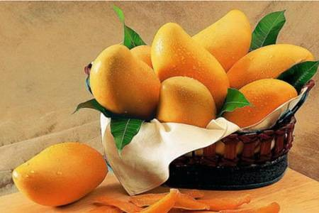 芒果的功效与作用禁忌,吃芒果补充维生素滋养肌肤