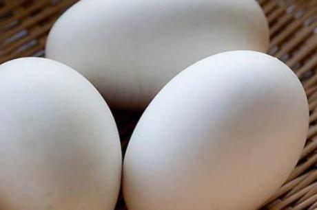 孕妇吃鹅蛋