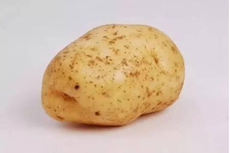 土豆发芽了还能吃吗?碰到这一种情况就绝对不能吃了