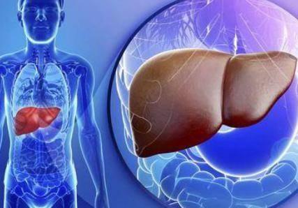 脂肪肝临床症状表现 轻微症状患者脂肪肝如何应对治疗方法