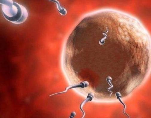 影响女性受孕的4个因素,宫颈口太小会影响怀孕吗?