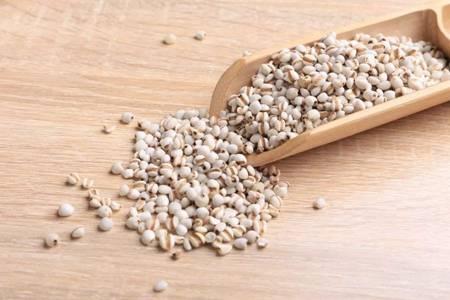 薏米怎么吃除湿效果最好,六种家常吃法简单去除湿气