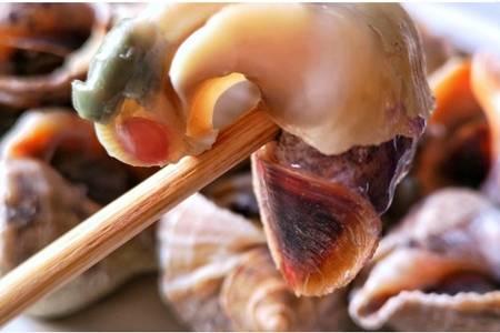 海螺怎么吃