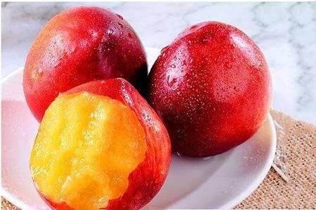 油桃的禁忌