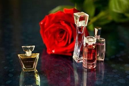 玫瑰精油的功效与作用是什么 玫瑰精油的使用方法详情介绍