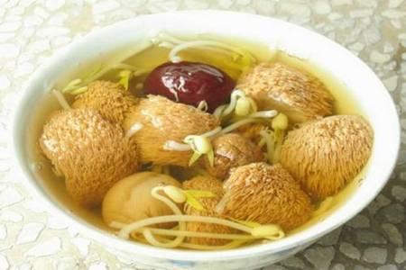 家常菜猴头菇怎么吃,山珍猴头菇的美味养生做法