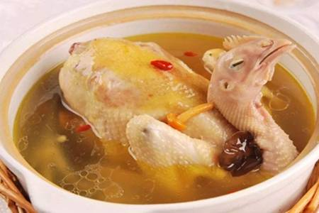 鸡汤的做法
