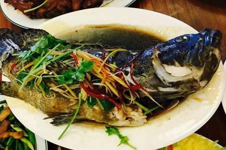 鲜美鱼的家常简单做法,红烧鱼糖醋鱼的菜谱大全