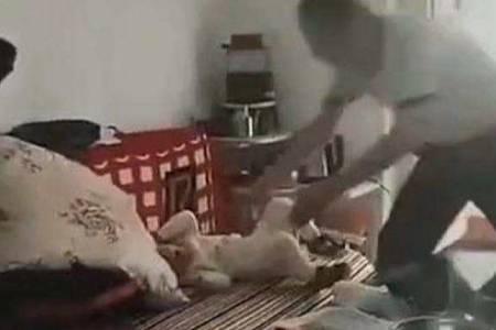 陕西遭父亲抱摔幼童死亡  7秒短视频惹人愤怒事件详情细节揭秘