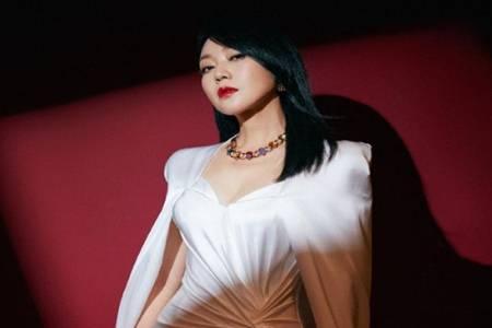 閆妮斬獲第26屆白玉蘭最佳女主角 閆妮金鷹獎飛天獎白玉蘭視后大滿貫