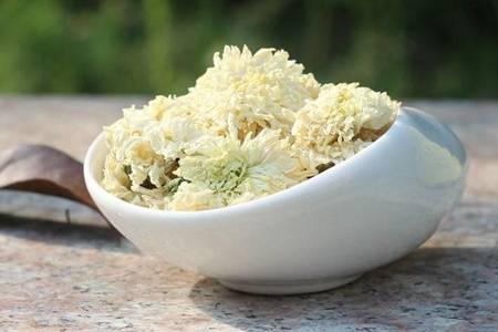 白菊花泡水喝有什么好处 白菊花的功效与作用及禁忌