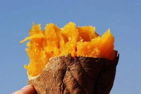 红薯不能和什么一起吃 红薯的功效和作用