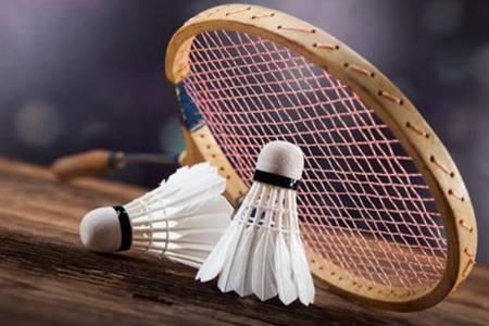 什么牌子羽毛球拍好用又轻  羽毛球拍品牌排行前十推荐