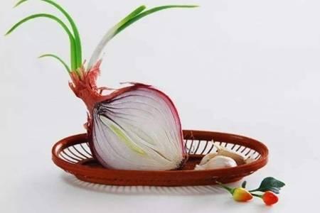 洋葱的功效与作用  洋葱是否可以除甲醛发芽了还能吃吗
