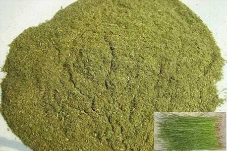 益母草粉的功效和作用 益母草粉的四个好处