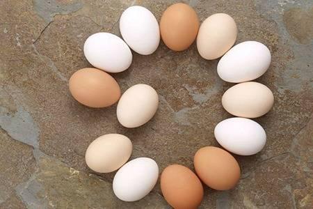 煮熟的鸡蛋能放几天?超过这个时间一定不能在食用