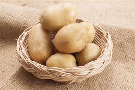 土豆的功效与作用 吃土豆的六大好处