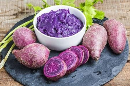 紫薯能熬粥喝吗?紫薯的营养价值及功效与作用
