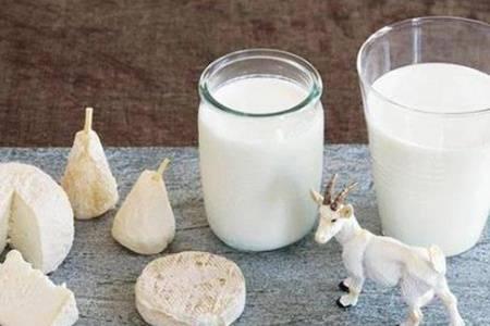 羊奶粉的功效与作用 羊奶粉有什么禁忌可以空腹喝吗