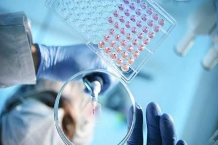 新冠肺炎可能成为长期流行传染病 网友:活着真不容易