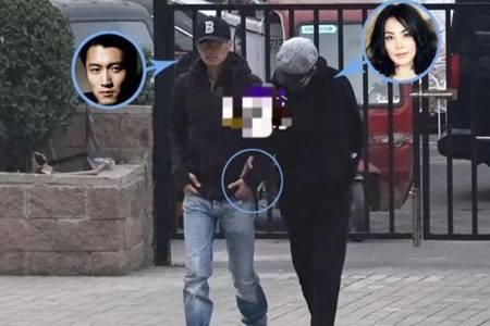 天后王菲被曝高龄产子 这是怎么回事孩子生父是谢霆锋吗