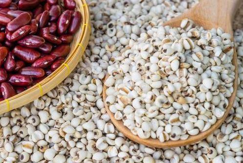 薏米的功效与作用多种多样 薏米怎么吃最除湿?