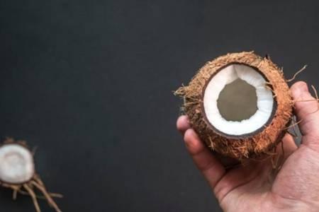椰子肉有什么功效与作用 新鲜青椰子和老椰子哪个更好