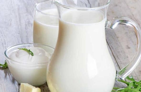 牛奶的功效和作用有哪些 喝牛奶有哪些注意事项?
