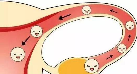 输卵管堵塞有什么样症状 堵塞的原因是什么导致的