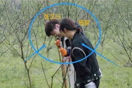 杨紫张艺兴在一起了 《向往的生活5》被扒穿情侣睡衣