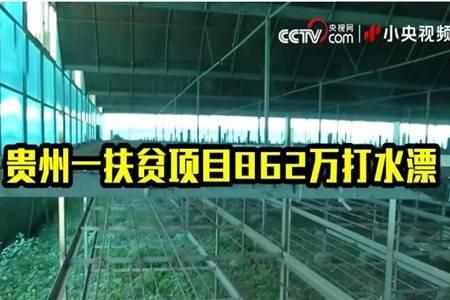 央视曝光贵州扶贫项目862万打水漂 网友:这都不判刑?