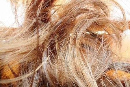 头发分叉能有多厉害 什么原因造成的要怎么修复