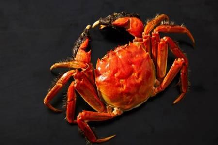 活螃蟹死了能不能吃有啥后果 死的大闸蟹是否存在食用风险